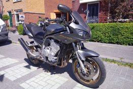 yamaha fzs1 fazer 1000cc metal gun grey / gold forged carbon fsb-dip.nl